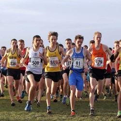 Preview: Area cross country action