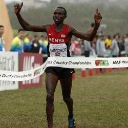 Geoffrey Kipsang Kamworor wins World Cross gold