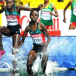 World Championships: Women's 3000m steeplechase