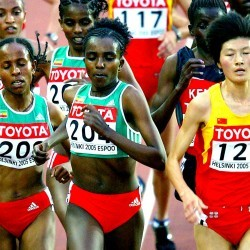 World Championships: Women's 3000m and 5000m