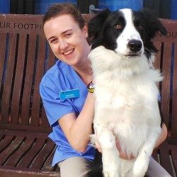 Laura Muir: From Diamond League to Dogs Trust