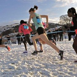 Cross country waits for its Olympic moment