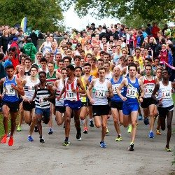 Leeds City and Swansea defend relays titles