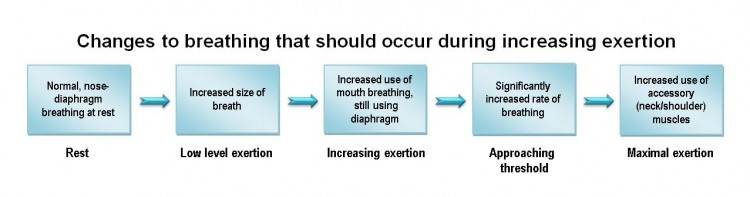 Changes to breathing