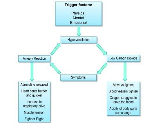 Hyperventilation diagram