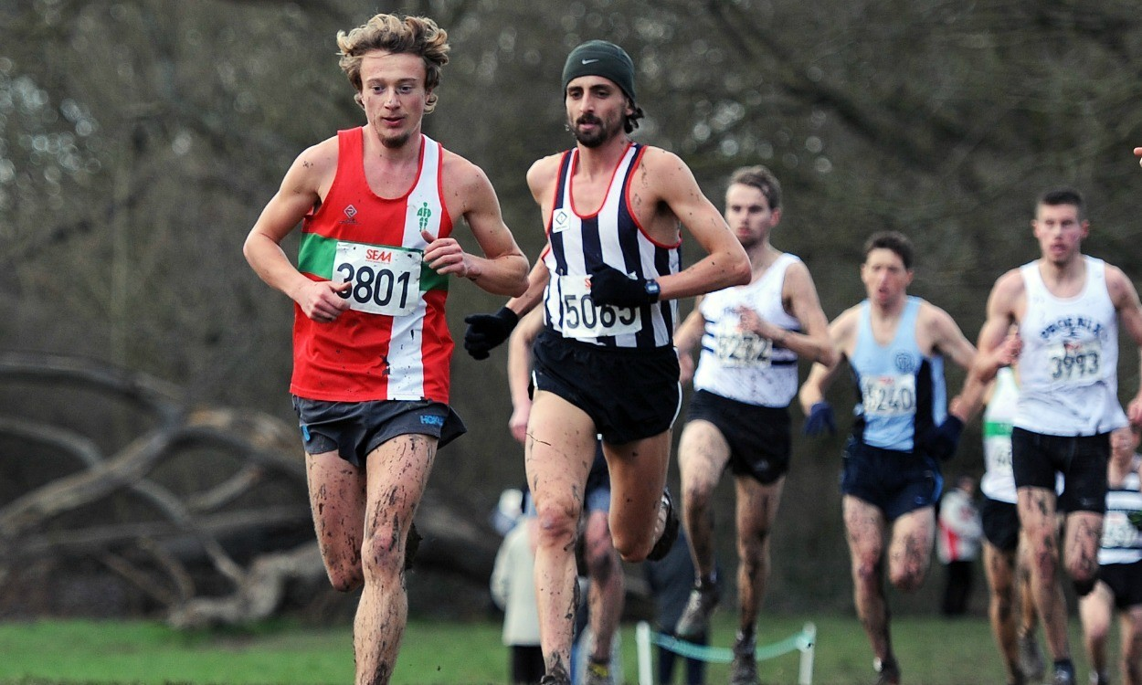 Area cross country championships round-up
