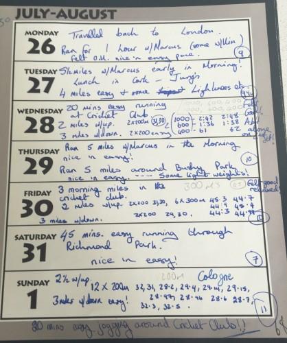 osullivan diary 2 1993