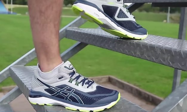 ASICS GT-2000 v6 running shoes